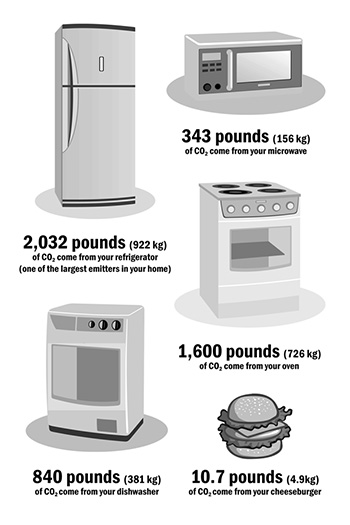 CO2 emissions of common household items